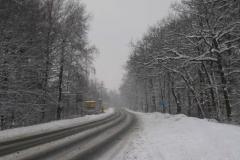 Sněhová nadílka leden 2010